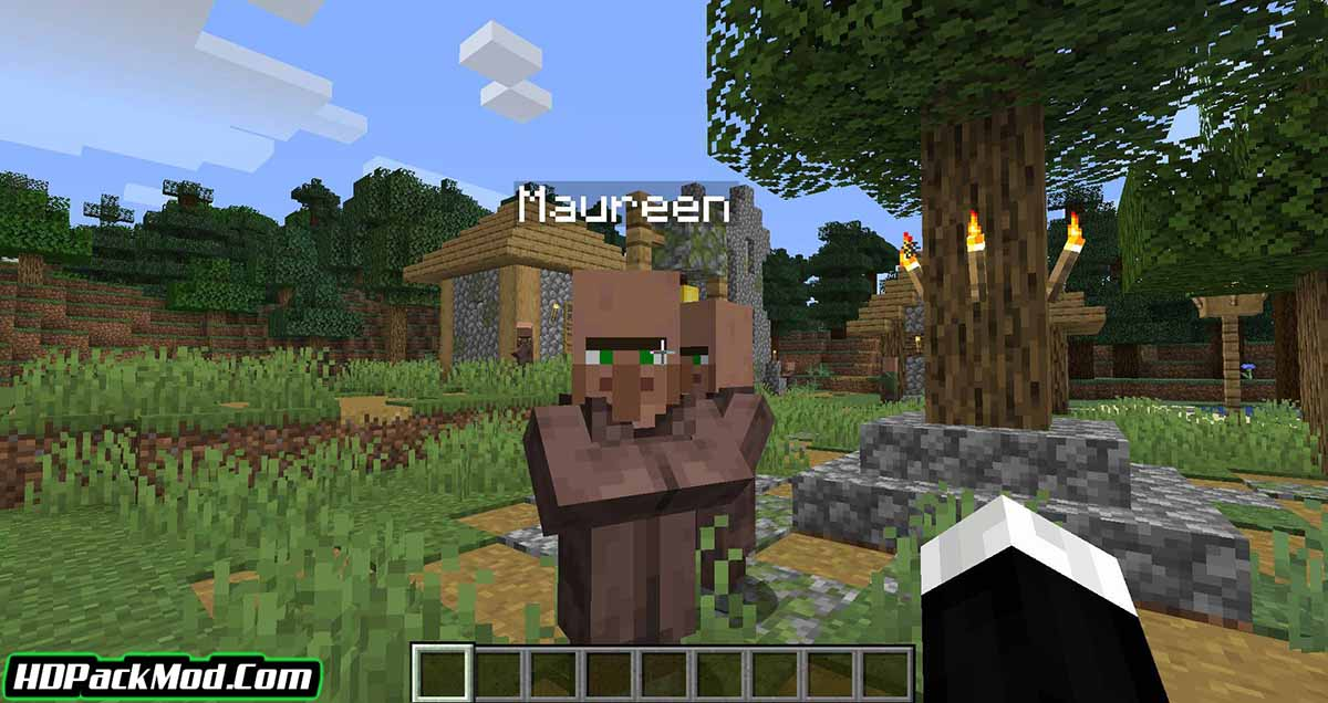 villager names mod 2 - Villager Names Mod 1.17.1/1.16.5 (Add Names to The Villagers)
