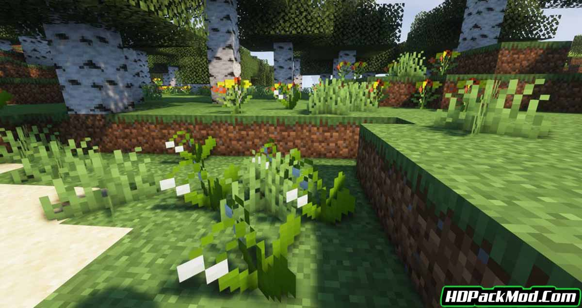 arkys environment mod 2 - Arky's Environment Mod 1.16.5 (Decoration, Biomes)
